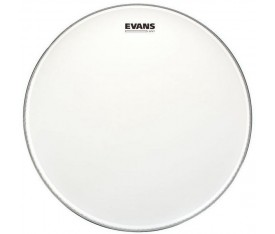 "Evans B18UV1 18"" UV1 Coated Tom Derisi"